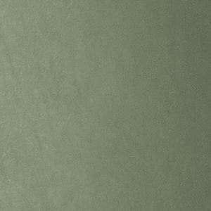 Piel sintética verde